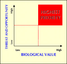Graph of biological importance vs. threat and opportunity