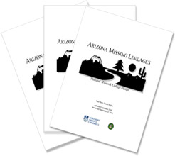 Arizona Missing Linkages Reports